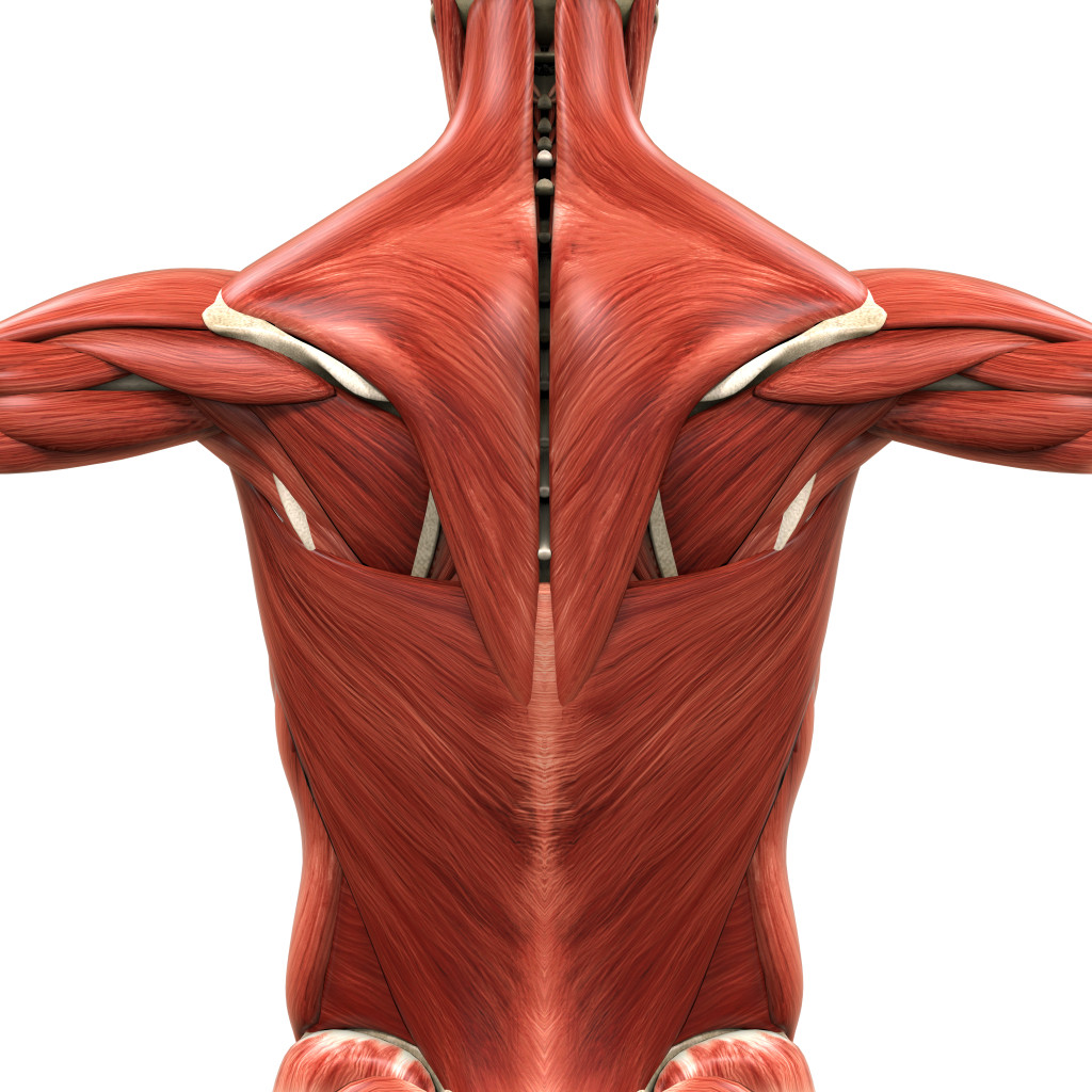 healthy personal tips for the new year Back pain waist pain also, quick tip ibadan lagos mainland ikeja vi abja